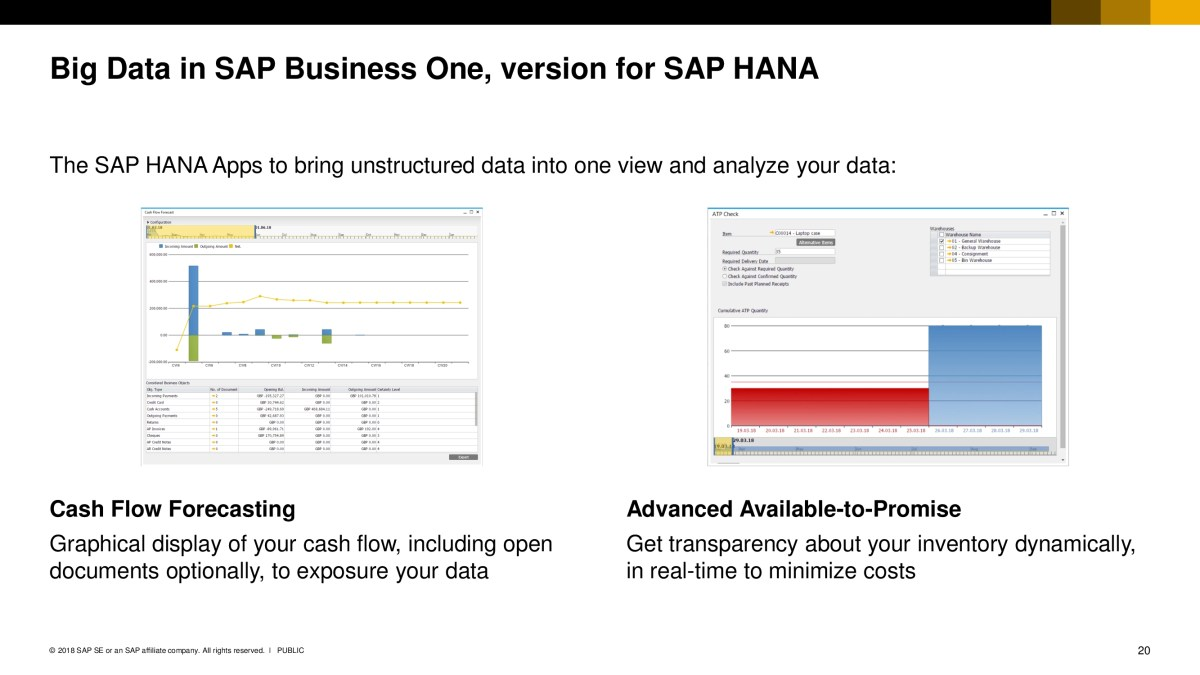 SAP Business One 19
