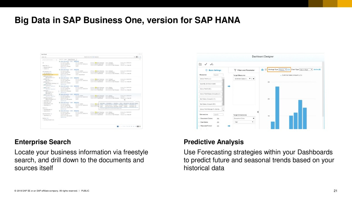 SAP Business One 20