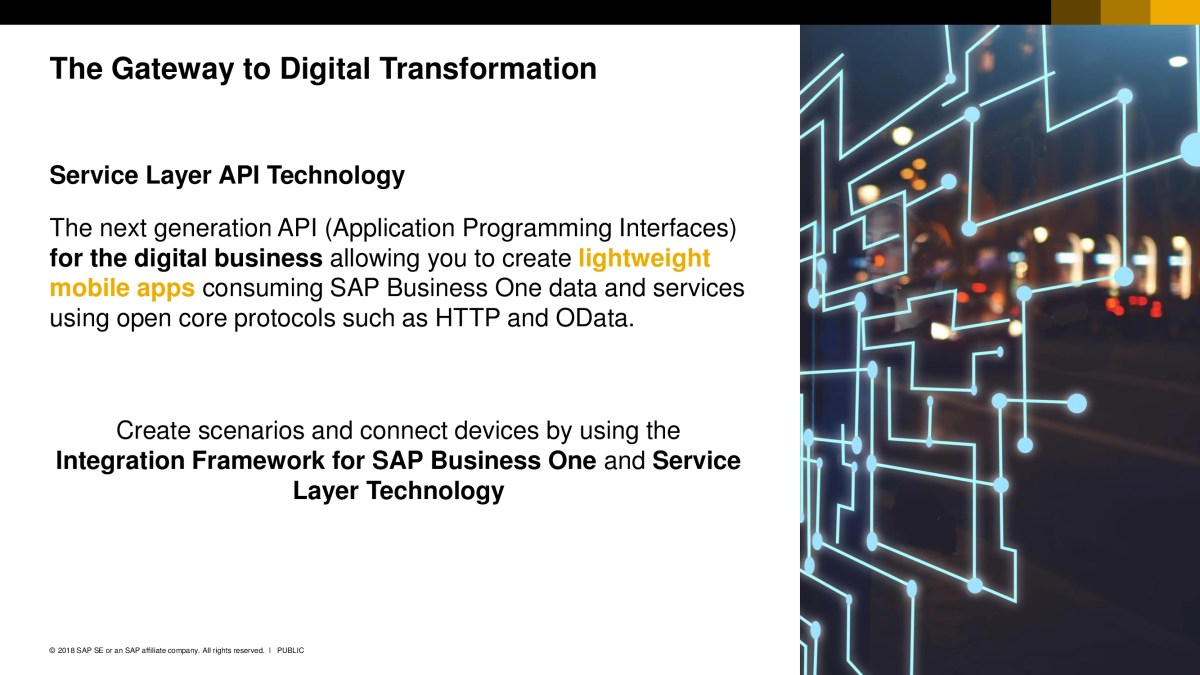 SAP Business One 29