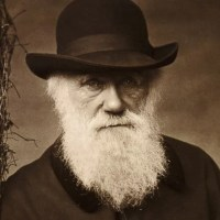 The Evolution Of Evolution - From Darwin To Modern Synthesis