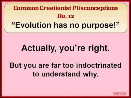 Creationist Misconceptions No. 12 - No Purpose