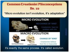 Creationist Misconceptions No. 22 - Macro Evolution