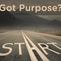 Does Morality Have a Purpose?