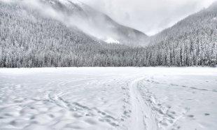 Imagini de poveste în inima munților. Locul din România unde totul este îmbrăcat într-un strat gros de zăpadă 482