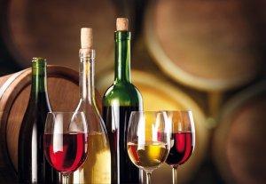 💬 Aspettando la 71ª Festa del Vino di San Cassiano di Livenza