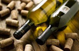 Festa del Vino Lughignano Casale sul Sile TV foto