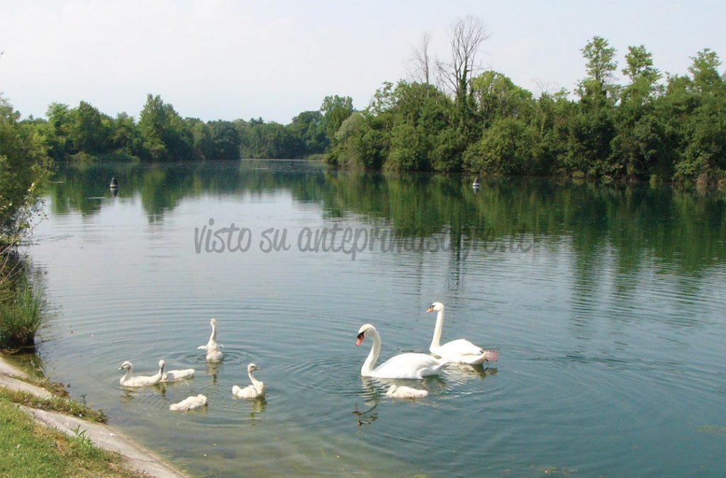 Festa del Lago Burida a Porcia