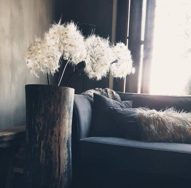 Foto met sfeerimpressie woonkamer Antérieur Authentique met winters tegenlicht