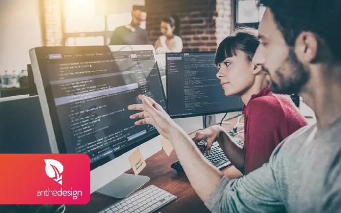 web developer studies level
