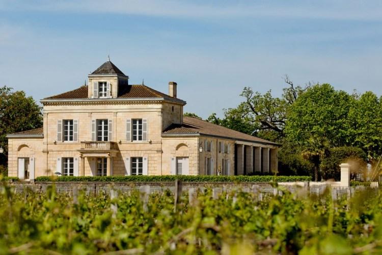 Millésime 2017 vu par l'équipe de Château Montrose
