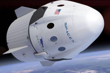 spaceXdrago_petrus