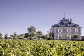 Chais_Haut_Bailly_2