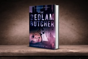 The Bedlam Butcher by Anthon Red