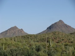 Landscape around Tucson