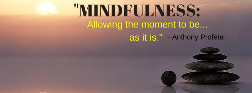 Meditation Teacher, Mindfulness Teacher Florida, Meditate