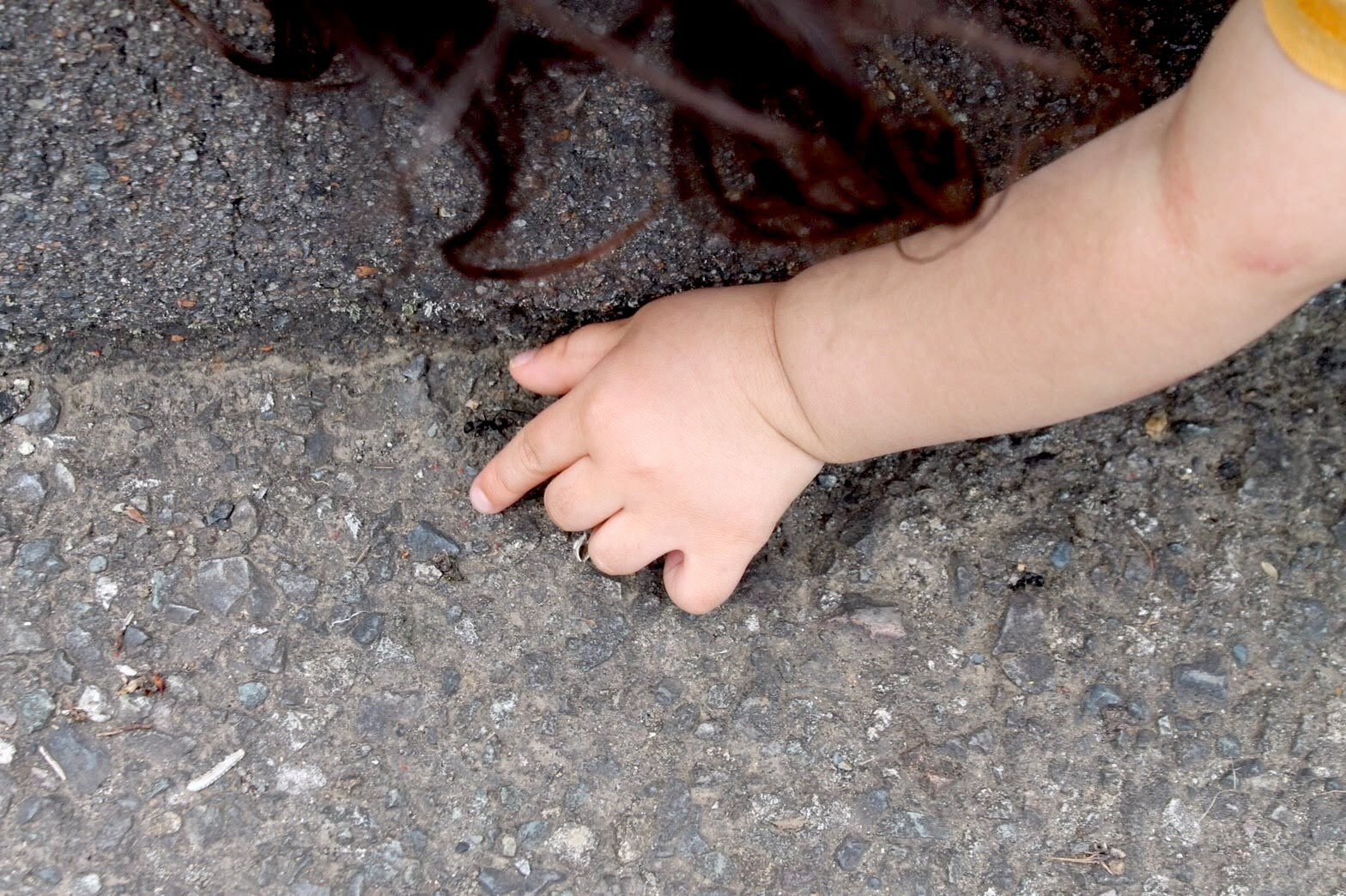Photograph of a child trying to catch an ant.