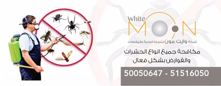مكافحة حشرات – مكافحة قوارض – بق الفراش – الصراصير