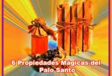 Photo of 6 Propiedades Mágicas del Palo Santo