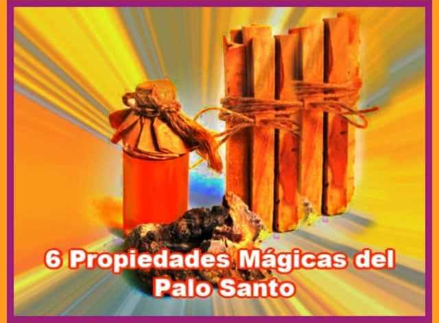 6 propiedades mágicas del Palo Santo. Antía Tarot.