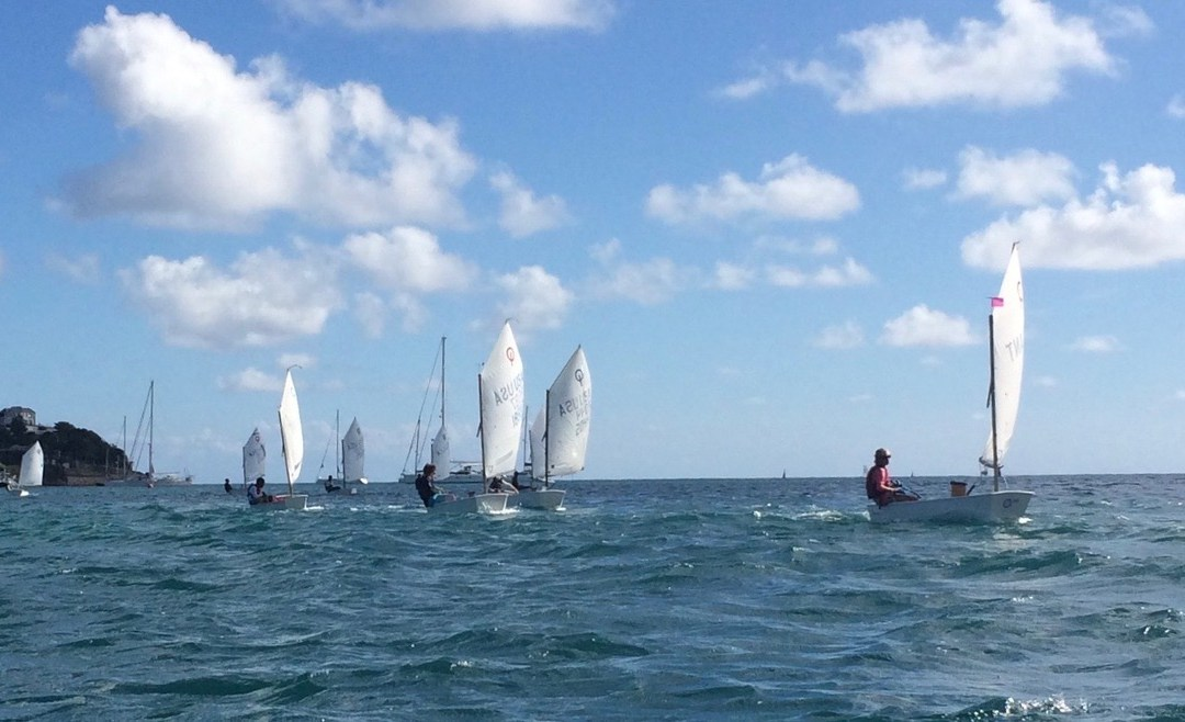 Optimist and Laser Open Race Results for 2019