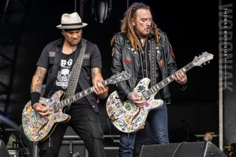 The Wildhearts