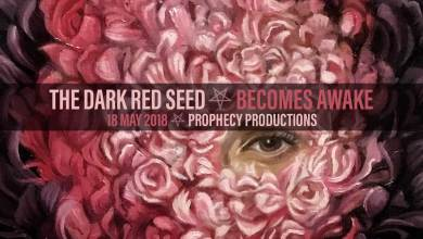 Dark Red Seed