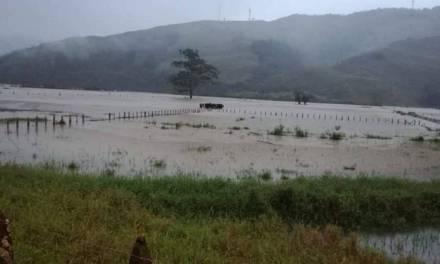 Gobernación busca soluciones para situación en Urrao