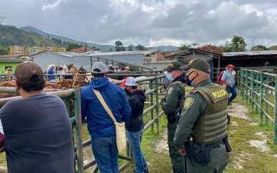 Reactivación de la Feria Ganadera en Gómez Plata