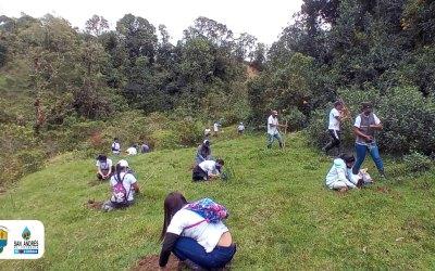 San Andrés de Cuerquia realiza una sembratón que beneficia al medio ambiente