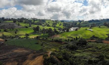 El Cerro Quitasol es ahora área protegida