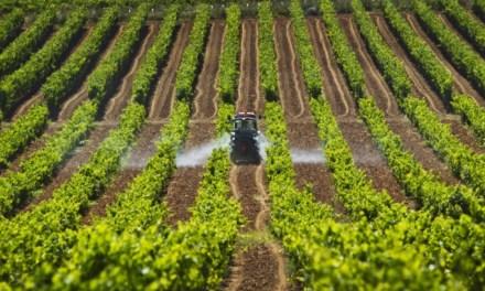 Cien mil millones para la agricultura antioqueña