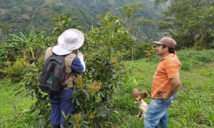 Betulia apoya a los campesinos y la naturaleza