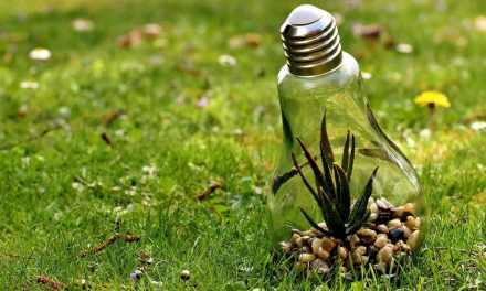 Ya hay Mesa Ambiental en el municipio de Olaya