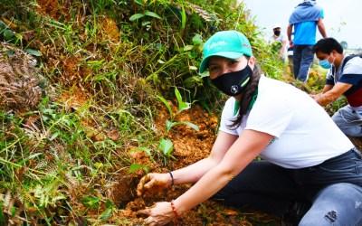 En el Día Mundial de la Tierra se sembraron más de 123.000 árboles en el departamento