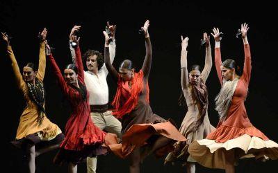 Apartadó celebrará el día Internacional de la Danza