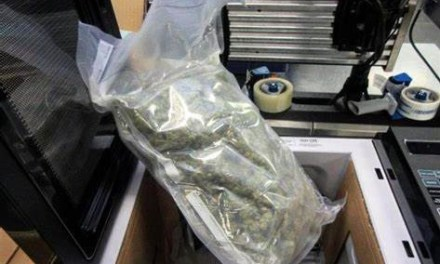 Capturado por llevar marihuana en un microondas