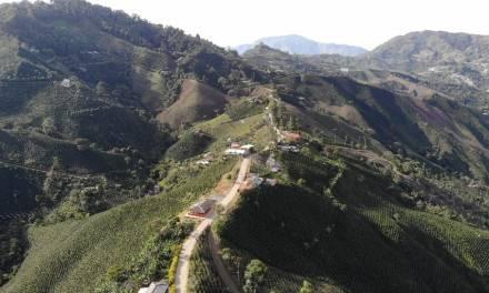 Pavimentarán el sector Palo Santo, Concordia