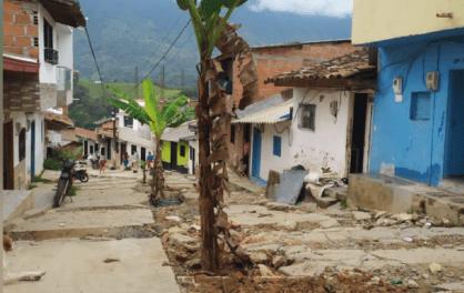 Habitantes de Cocorná sembraron plátano en una vía del municipio