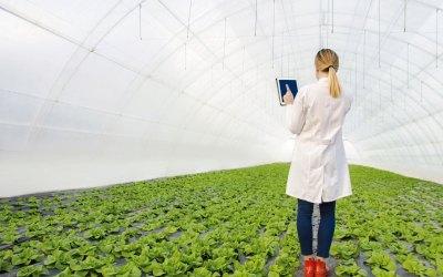 Capacitación frente al manejo de agroquímicos en Dabeiba