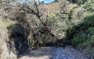 Durante el fin de semana reportaron varios derrumbes en Abejorral y La Unión