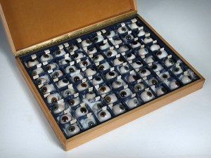 Prosthetic eyes are up for sale