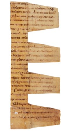 Bede's Homilies on the Gospels in Latin
