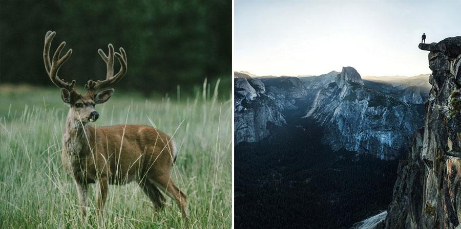 Yosemite and El Capitan