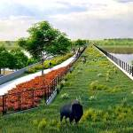 The Bison Bridge: The World's Longest Man-Made Wildlife Crossing