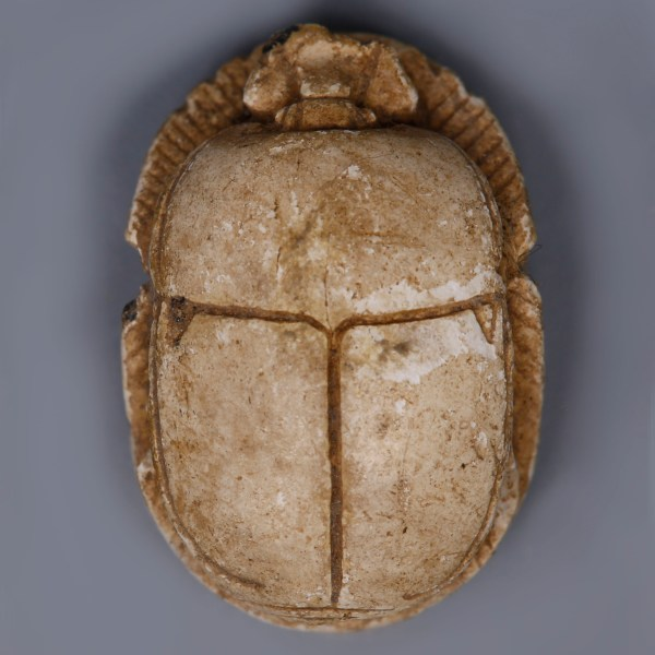 Egyptian Steatite Scarab with a Blessing to Amun