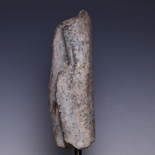 Chinese Sui Dynasty Grey Fragmentary Torso of a Buddhist Deity