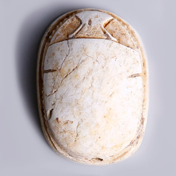 Egyptian Steatite Hyksos Period Scarab with Ornate Pattern