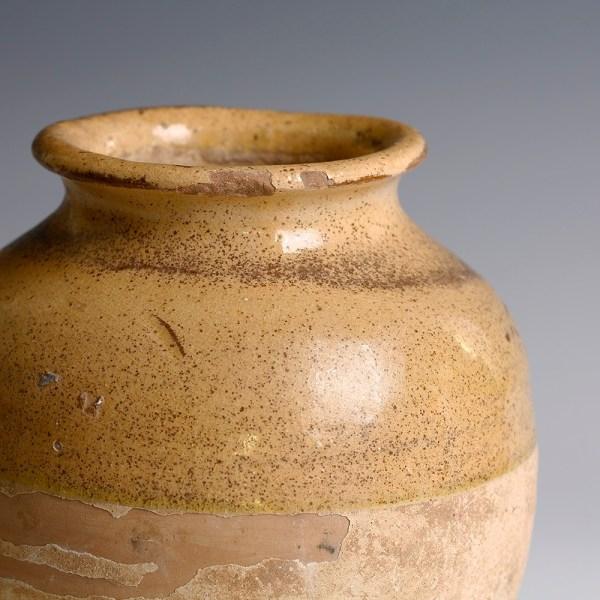 Chinese Tang Wan Nian Jar