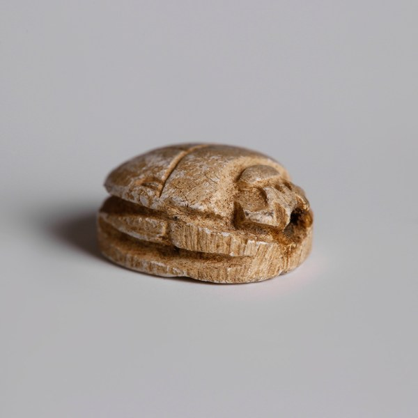 Large Egyptian Steatite Scarab with Royal Name