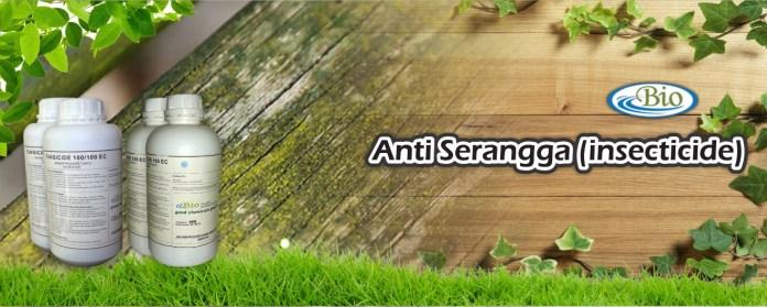 Anti Serangga